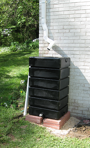 Completed installation of RainBox rain barrel